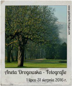 aneta_drogowska_fotografie-1